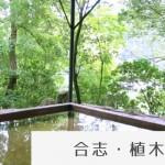 koushi_ueki273_thumb