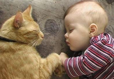 ぐっすり眠りたい日におススメの5つの事☆